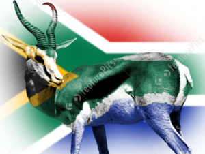 south-african-flag-stock-illustration-